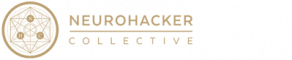 NeuroHacker_Logo_Original